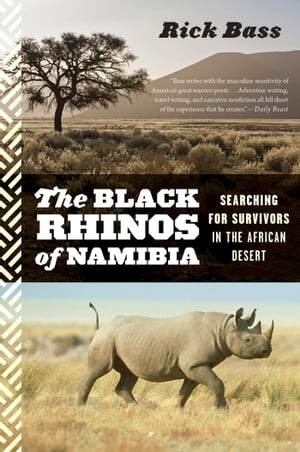 The Black Rhinos of Namibia Searching for Survivors in the African Desert