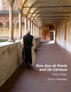 One Day at Pavia and Its Certosa from Milan by Enrico Massetti