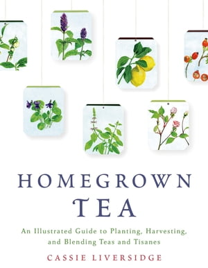 Homegrown Tea An Illustrated Guide to Planting,  Harvesting,  and Blending Teas and Tisanes