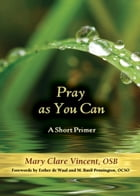 Pray as You Can: A Short Primer by Mary Clare Vincent