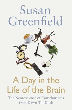 A Day in the Life of the Brain The Neuroscience of Consciousness from Dawn Till Dusk