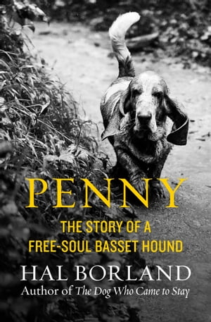 Penny The Story of a Free-Soul Basset Hound