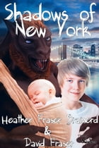 Shadows of New York by Heather Fraser Brainerd