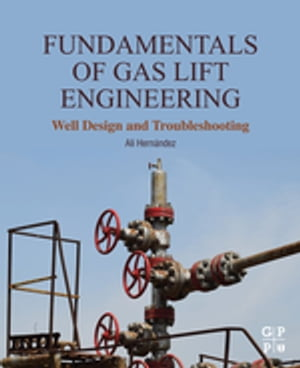 Fundamentals of Gas Lift Engineering Well Design and Troubleshooting
