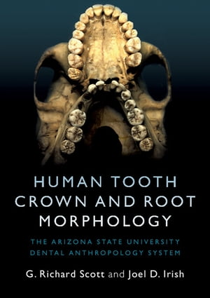 Human Tooth Crown and Root Morphology The Arizona State University Dental Anthropology System