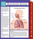 Respiratory System (Speedy Study Guides) by Speedy Publishing