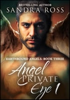 Angel Private Eye 1: Earthbound Angels 3 by Sandra Ross