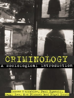 Criminology A Sociological Introduction