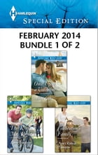 Harlequin Special Edition February 2014 - Bundle 1 of 2: Once Upon a Valentine\The Real Mr. Right\Celebration's Family by Allison Leigh