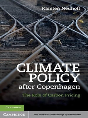 Climate Policy after Copenhagen The Role of Carbon Pricing