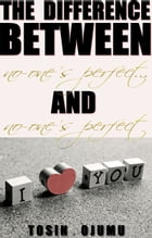 The Difference Between No-One's Perfect...and No-One's Perfect by Tosin Ojumu