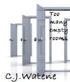 Too Many Empty Rooms by C.J. Watene