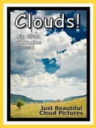Just Cloud Photos! Big Book of Clouds Photographs & Pictures Vol. 1 by Big Book of Photos