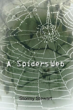 A Spiders Web