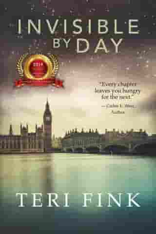Invisible by Day by Teri Fink