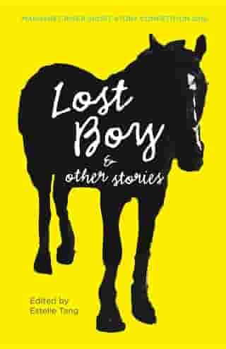 Lost Boy & other stories by Melanie Napthine