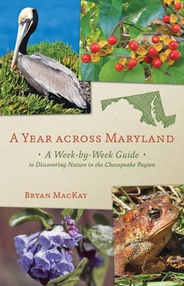 Book A Year across Maryland: A Week-by-Week Guide to Discovering Nature in the Chesapeake Region by Bryan MacKay