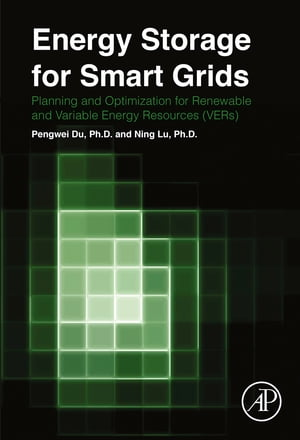 Energy Storage for Smart Grids Planning and Operation for Renewable and Variable Energy Resources (VERs)