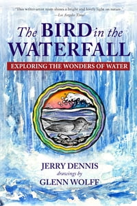 The Bird in the Waterfall: Exploring the Wonders of Water