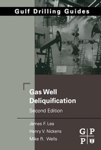 Gas Well Deliquification