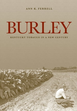 Burley Kentucky Tobacco in a New Century