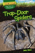 Trap-Door Spiders