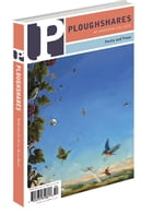 Ploughshares Winter 2015-2016 Volume 41 No. 4 by Lisa Fetchko