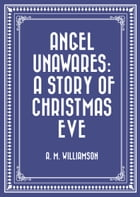 Angel Unawares: A Story of Christmas Eve by A. M. Williamson