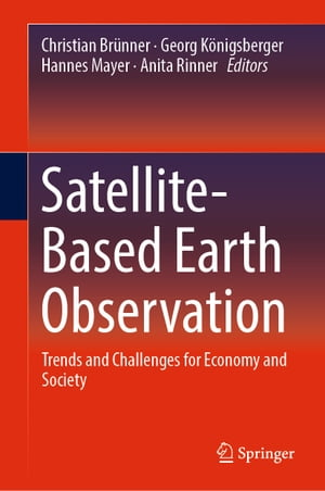 Satellite-Based Earth Observation: Trends and Challenges for Economy and Society