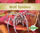 Wolf Spiders by Claire Archer