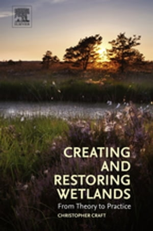 Creating and Restoring Wetlands From Theory to Practice