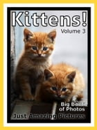 Just Kitten Photos! Big Book of Photographs & Pictures of Baby Cats & Cat Kittens, Vol. 3 by Big Book of Photos