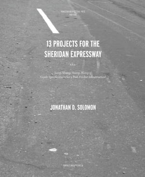 Pamphlet Architecture 26 Thirteen Projects for the Sheridan Expressway