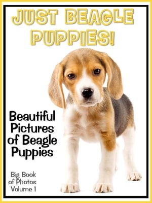 Just Beagle Puppy Photos! Big Book of Beagle Puppies Photographs & Adorable Pictures,  Vol. 1