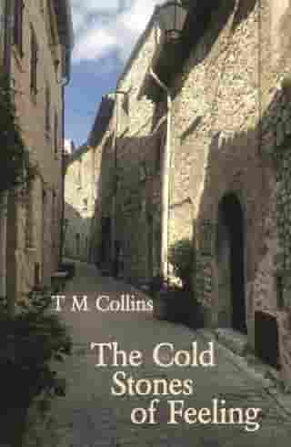 The Cold Stones of Feeling by T M Collins