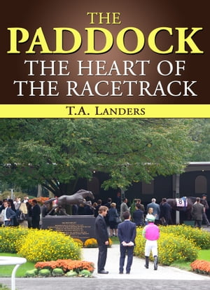 The Paddock The Heart of the Racetrack