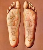 The Ultimate Guide to Reflexology by Johnathan Jericho