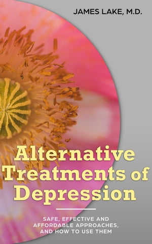 Alternative Treatments of Depression: Safe, Effective and Affordable Approaches and How to Use Them