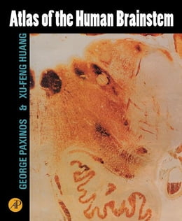 Book Atlas of the Human Brainstem by Paxinos, George
