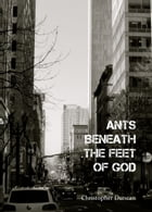 Ants Beneath the Feet of God by Christopher Duncan