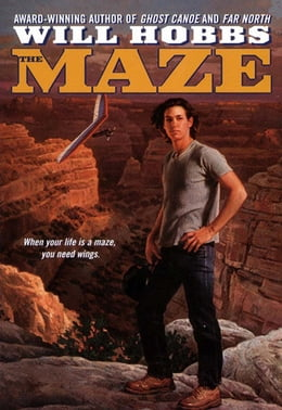 Book The Maze by Will Hobbs