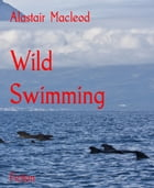 Wild Swimming by Alastair Macleod