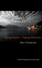 Taking Notice : Paying Attention: How a Traveler Sees by Gary Dwyer