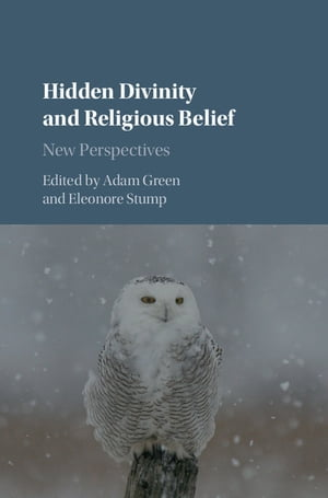 Hidden Divinity and Religious Belief New Perspectives