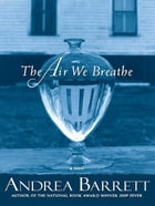 The Air We Breathe: A Novel Cover Image