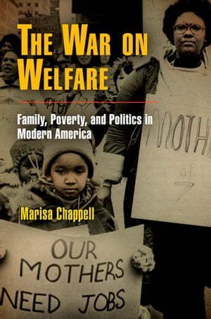The War on Welfare Family,  Poverty,  and Politics in Modern America