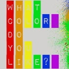 What Color Do You Like? by Dominique America