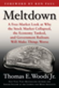 Meltdown: A Free-Market Look at Why the Stock Market Collapsed, the Economy Tanked, and the…