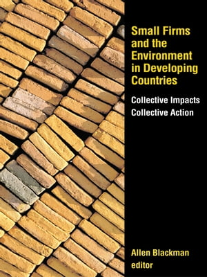 "Small Firms and the Environment in Developing Countries ""Collective Impacts,  Collective Action"""
