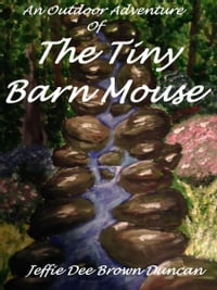 An Outdoor Adventure Of The Tiny Barn Mouse